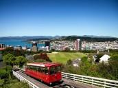 En vacances pendant votre stage en Nouvelle-Zélande, que voir ?